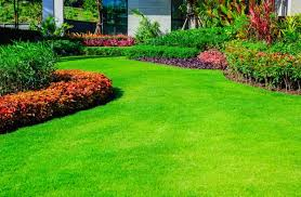 Lawn Care Service Offering Great Solutions